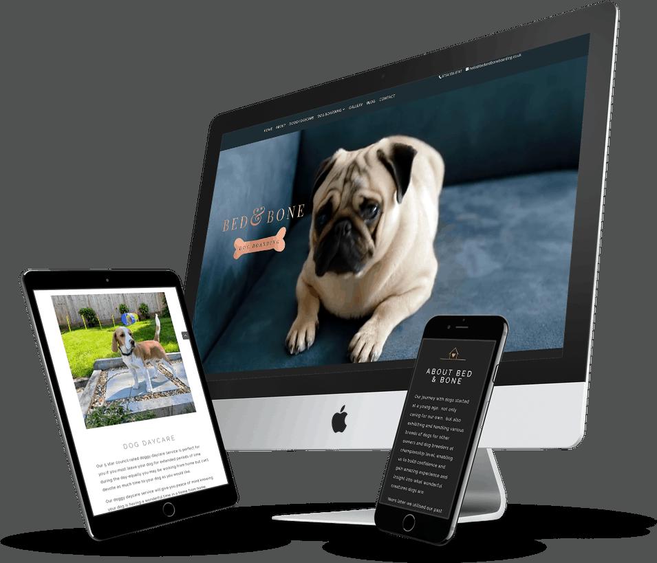 website design east sussex small business dog boarding